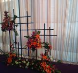 Free Photo - Orange Flower Arrangements