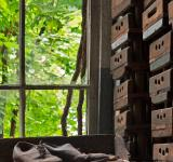 Free Photo - Abandoned Silk Mill Shoes
