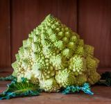 Free Photo - Romanesco broccoli on wooden background