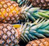 Free Photo - A lot of pineapple fruit background