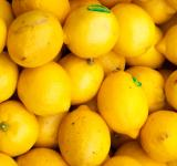 Free Photo - Colorful Display Of Lemons In Market