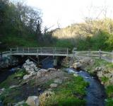 Free Photo - Foot Bridge over stream