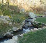 Free Photo - Rocky brook stream