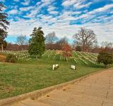 Free Photo - Arlington National Cemetery - HDR