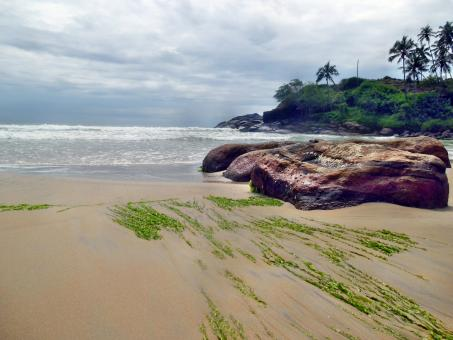 Kerala Beach landscape - Free Stock Photo