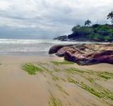 Free Photo - Kerala Beach landscape