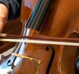 Free Photo - Cello professional player with symphony