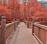 Free Photo - Ruby Meadowlark Bridge - HDR
