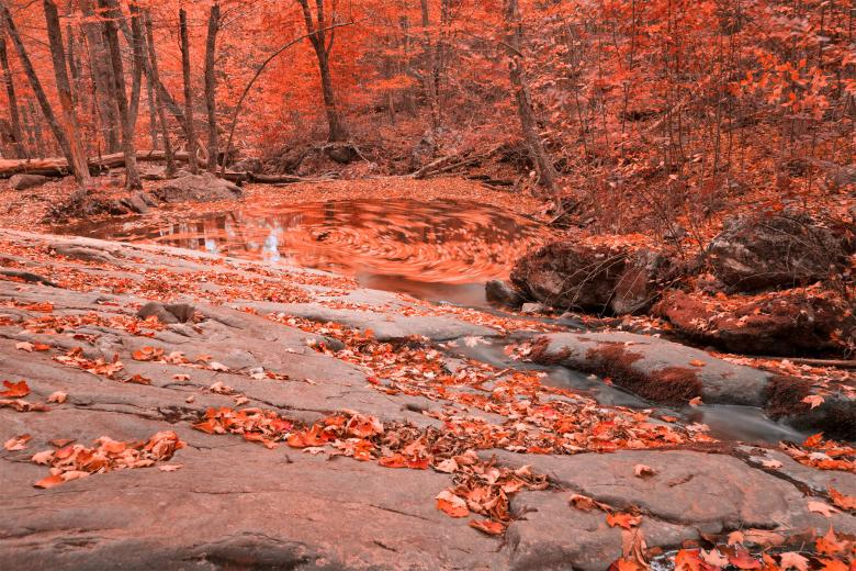 Ruby Hollow Whirlpool - Free Autumn Stock Photos