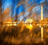 Free Photo - Washington DC Wonderland