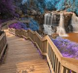 Free Photo - Inca Blackwater Falls - HDR