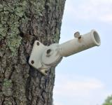 Free Photo - Flag Holder On Tree