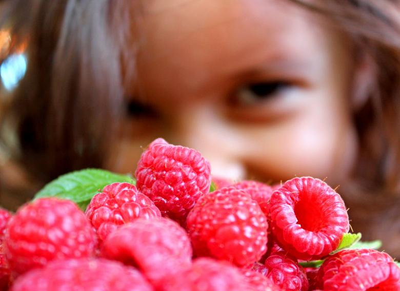 Free Stock Photo of Girl and raspberries Created by Jack Moreh