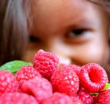 Free Photo - Girl and raspberries