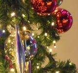 Free Photo - Christmas Tree Decorations