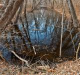 Free Photo - Sycamore Landing Creek
