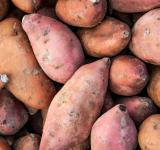Free Photo - Organic sweet potatoes