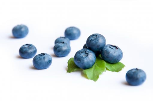 Blueberries - Free Stock Photo