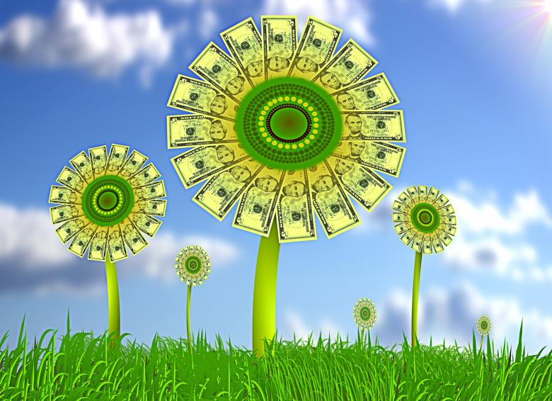 Free Stock Photo of Sunflowers with dollar bills Created by Jack Moreh