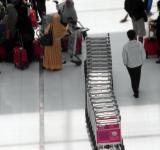Free Photo - Line of Airport Luggage Trolleys