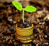 Free Photo - Money growth concept - Coins in the soil