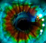 Free Photo - Great white shark attack eye reflection