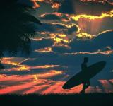 Free Photo - Surfer and surfboard at sunset