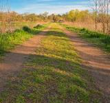 Free Photo - McKee-Beshers Trail - HDR