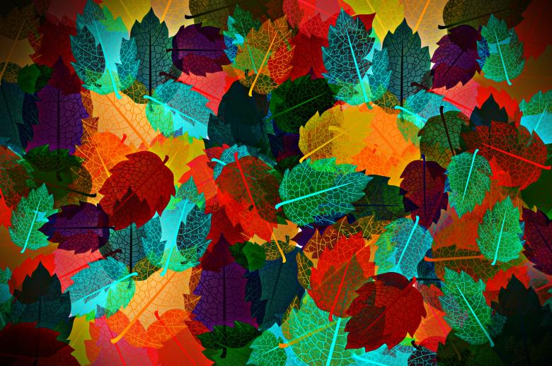 Free Stock Photo of Colorful autumn leaves pattern Created by Jack Moreh