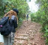 Free Photo - Hiking in Colombia