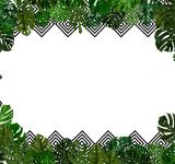 Free Photo - Tropical leaves background with copyspac
