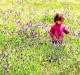 Free Photo - Sweet little child in a meadow with wild purple spring flowers