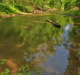 Free Photo - Chisel Branch Creek - HDR