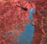 Free Photo - Chisel Branch Creek - Tickle Me Pink HDR
