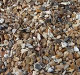 Free Photo - pebbles