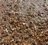Free Photo - Pebbles at sea shore