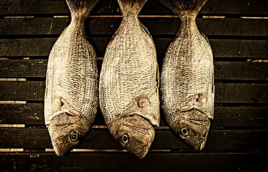 Fish ready to smoke on wood background - Free Stock Photo