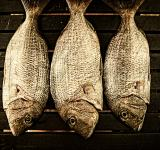 Free Photo - Fish ready to smoke on wood background