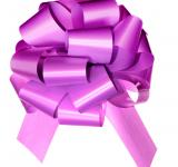 Free Photo - Violet bow