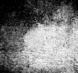 Free Photo - Grunge Screen Texture