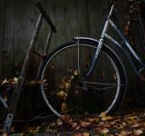 Free Photo - Fall transportation