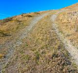 Free Photo - Point Reyes Winding Trail - HDR