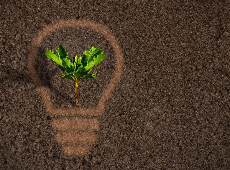 Green plant sprout growing within a lightbulb silhouette on soil - Free Environmental Stock Photos
