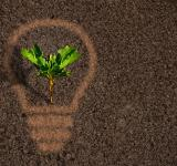 Free Photo - Green plant sprout growing within a lightbulb silhouette on soil
