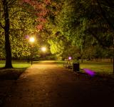 Free Photo - Night in the Park