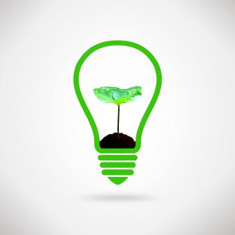 Lightbulb and plant sprout - Ecology and environment idea - Free Stock Photo