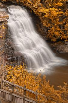 Gold Swallow Falls - HDR - Free Stock Photo