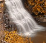 Free Photo - Gold Swallow Falls - HDR