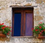 Free Photo - House window with flowers