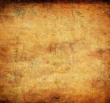 Free Photo - Old tainted parchment - Grunge background